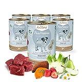 AniForte purena Ture Junior di menu Belle Manzo con patate 6X 400g bagnato della Fodera, prodotto naturale per cani, cuccioli e giovani cani