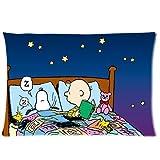 Justice League Superheroes Logos Pillowcase/Fundas para almohada 20x26 Inch