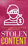 What to do about stolen content: a how-to book for authors & creatives (English Edition)
