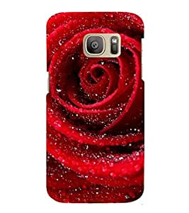 Fuson Designer Back Case Cover for Samsung Galaxy S7 :: Samsung Galaxy S7 Duos :: Samsung Galaxy S7 G930F G930 G930Fd (Rose lovely rose Beautiful Rose red Rose Red)