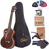 Best Tenor Ukuleles - Tenor ukulele 26 inch professional rosewood ukulele send Review