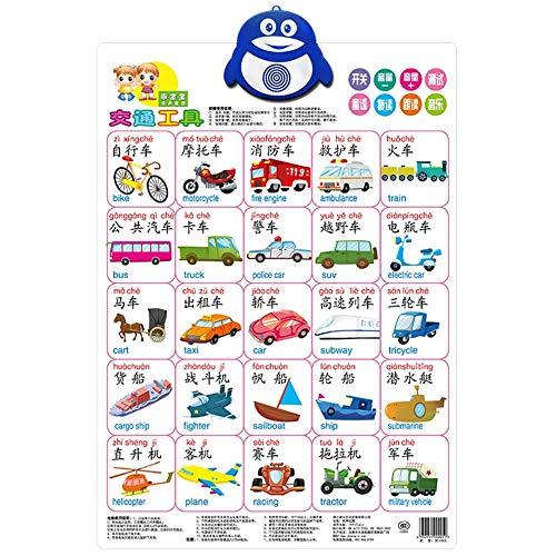Multicolor Ton Wall Chart Big Picture Kinder Lernspielzeug Kindergarten Lehrmaterialien Transport werden kann Hörte