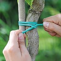 Thompson & MORGAN Suave Atado Planta elástico Soporte Para Planta Para El Jardín ESTACAS, Pared Hilo, CAÑAS & Marcos 1 x 5 Metre Rollo de DURADERO LAZO