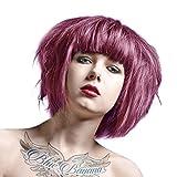 La Riche Directions Haarfarbe 88ml (Lavendel)