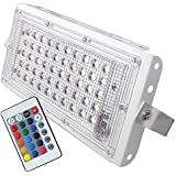 FEMINGO® RGB Waterproof LED Flood Light Multi Color with Remote Landscape IP66 (50 Watt)