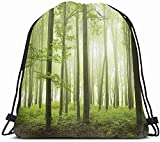 Drawstring Backpack String Bag 14X16 Brown Tree Trail Foggy Forest Magic During Spring Green Nature Parks Orange Enchanted Fog Day Night Morning Sport Gym Sackpack Hiking Yoga Travel Beach