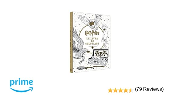 Coloriage Famille Royale.Harry Potter Le Livre De Coloriages Amazon Fr Collectif