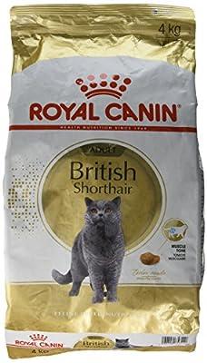 Royal Canin Cat Food - British Shorthair 34 by Royal Canin