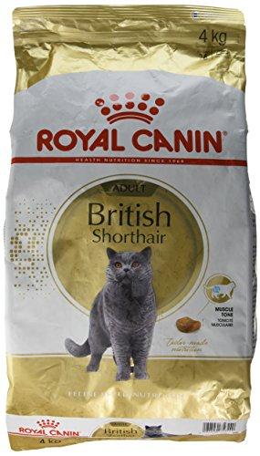 Royal Canin Feline British Shorthair, 1er Pack (1 x 4 kg Beutel) - Royal Exigent Savour Canin