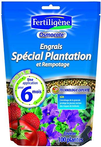 FERTILIGENE 8960 8125 Engrais Fraisiers et Petits Fruits 800 g
