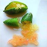 Shopmeeko 20 teile/beutel Ice Pink Finger Frucht Kalk pflanzen Seltene Granatapfelpflanzen Bonsai Diy Pflanze Für Hausgarten Pflanzen Blume Baum pflanzen 2: Orange