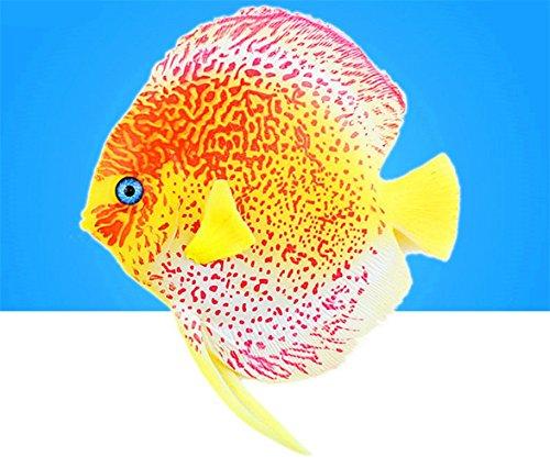 AISHUAIGE GuiXinWeiHeng (5 stücke) Aquarium Dekoration, Simulierte Tropische Fische, Aquarium Leuchtenden Kunststoff Aquarium Fisch, Aquarium Landschaft, Aquarium Dekoration (zufällige Farbe), C