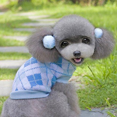 Candies Closet Hund Knit Sweater Pullover Valentines Verschiedene Designs, Medium, Light Blue Argyle -