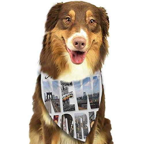 hulili Pet Dog Scarf New York Aerial Night View of NYC with Dusk Sky Cloudy Sunset in City Fashion Capital Art Photo Scarf for Small and Medium Dogs and Cats