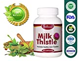 VitaGreen Milk Thistle Natural Ayurveda Formula Dietary and Nutritional Supplements for Healthy Organ