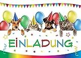 JuNa-Experten 12 Einladungskarten Kindergeburtstag Mädchen Jungen Katze Hund Tiere Geburtstagseinladungen Einladungen Geburtstags Party Kartenset