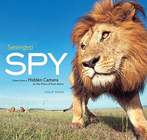 Serengeti Spy: Views from a Hidden Camera on the Plains of East Africa