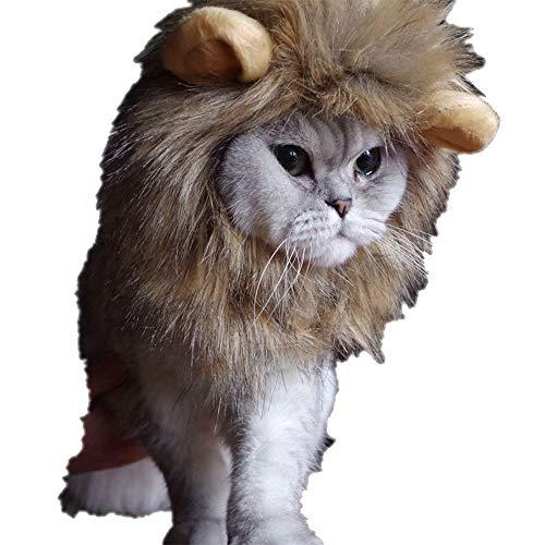 OTENGD Haustier Hut Löwe Mähne Kostüm lustige entzückende Perücke Wilder König Headwear Kostüme mit Ohren süß verkleiden Sich für Hund Katze Kitty Kleiner Welpe 3-farbiges Haar