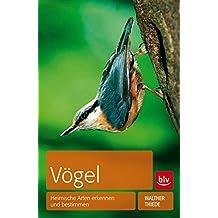 Vögel: Heimische Arten erkennen und bestimmen