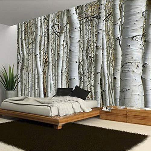 WJbxx Fototapete Wandtapete Moderne Naturlandschaft Birkenwald Fototapete Restaurant Wohnzimmer Sofa Hintergrund Wandbild Tapete Für Wände 3D 300 * 210 Cm - Birke Wohnzimmer Sofa