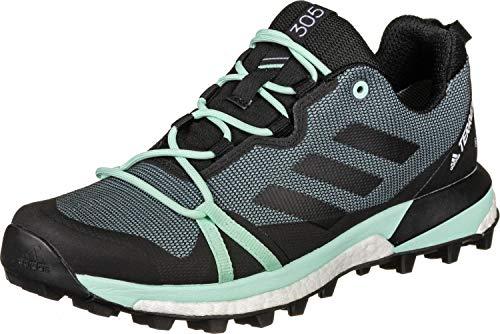adidas Terrex Skychaser LT GTX W Zapatillas de Trail Running Ash Grey