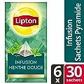 Lipton Infusion Menthe Exclusive Selection - 6 x 30 sachets pyramides pour professionnels