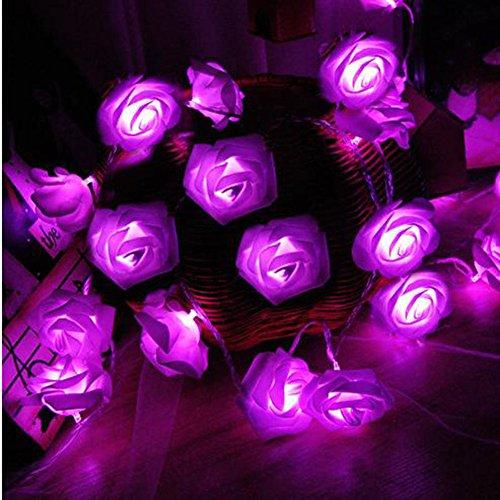 Morbuy Lichterketten, 20LED/30LED/40LED/50LED Rosen Blumen feenhafte String Lights für Hochzeit Festival Garden Party Weihnachtsdekoration Zubehör (3M/30LED, Lila)