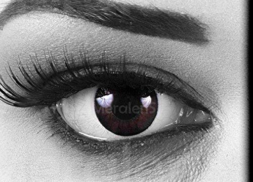 Meralens Circle Lenses schwarze Dolly Black ohne Stärke + 60ml Kombilösung + Behälter 14mm Big Eyes farbige Kontaktlinsen