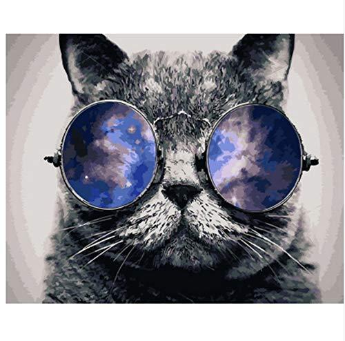WAZHCY Malen nach Zahlen wanddekoration ölgemälde DIY Bild auf leinwand für heimtextilien Schwarze Katze mit Brille 40x50 cm,Ohne Rahmen,D