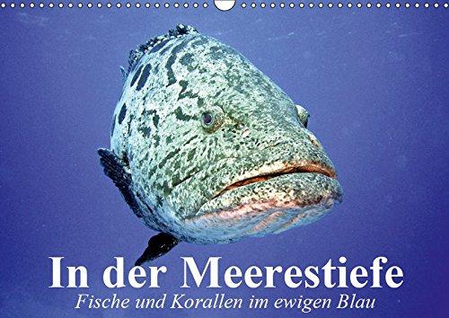 In der Meerestiefe. Fische und Korallen im ewigen Blau (Wandkalender 2019 DIN A3 quer): Abtauchen in die blauen Tiefen der Ozeane (Monatskalender, 14 Seiten ) (CALVENDO Tiere)