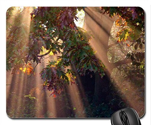 tress Mouse Pad, Mousepad (Forests Mouse Pad)