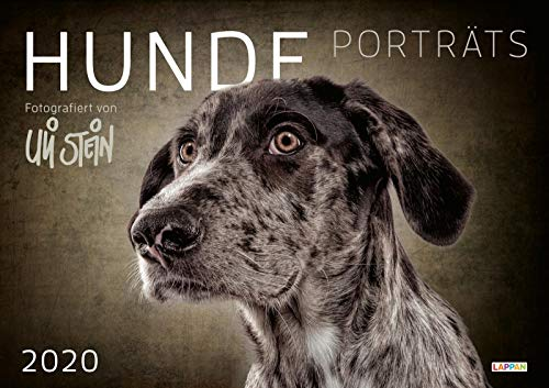 Uli Stein Hunde Portraits 2020 (Hund Kalender)