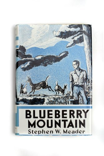Blueberry Mountain by Stephen Meader (2005-01-01)