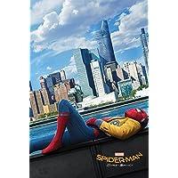 Pyramid International Teaser Spider-Man Homecoming Maxi Poster, Plastic/Glass, Multi-Colour, 61 x 91.5 x 1.3 cm