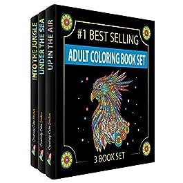 Creatively Calm Studios Tre libri, disegni dal cielo terra e mare, libri da colorare per gli adulti il   relax