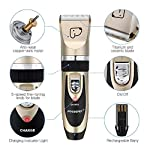 Dog Grooming Clippers, Focuspet 2 Speed Adjustable Dog Clippers Rechargeable Cordless Low Noise Dog Clippers Kit… 9