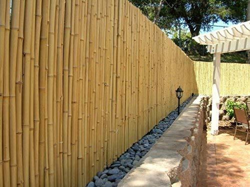 DE-COmmerce Hochwertiger Garten Zaun Sichtschutz Bambus ATY NATURE I Garten, Terrasse, Balkon Sichtschutz Bambus mit geschlossenen Rohren I Windschutz Bambus 100 cm x 250 cm Bambus Natur