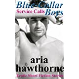 Blue-Collar Boys - Service Calls: Erotic Short Fiction Stories (English Edition)