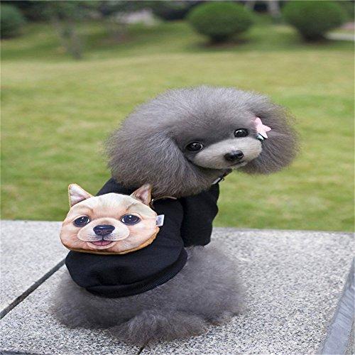 Pet Online Hund Kleidung Halloween Kostüme Kleidung cosplay kleine und mittlere Hunde Herbst und Winter Sportswear, SCHWARZ, (Kostüm Sportswear)