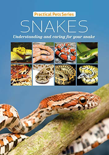 Snakes: Understanding and caring for your snake (Practical Pets Series Book 1) (English Edition) -