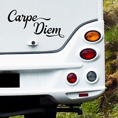 MA104 Clickzilla - Wohnmobil Aufkleber - Carpe Diem - Grösse: 33 cm x 17 cm (b x h)