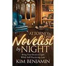 ATTORNEY BY DAY NOVELIST BY NI