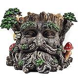 Blumentopf, Design Baumgesicht/Ent, Pflanztopf, Baummann Garten-Dekoration, mystische Skulptur, Übertopf, 15 cm hoch