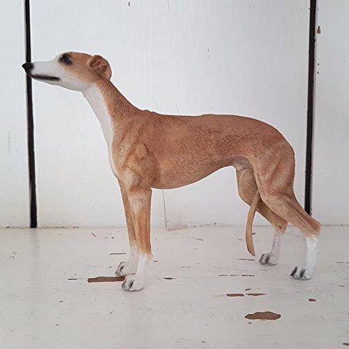 marron-y-blanco-greyhound-lebreles-adorno-de-perro-en-caja-de-regalo