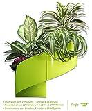 Ecco un vaso per fiori  versatile  e dal design unico con cui dare libero sfogo alla vostra immaginazione! Modul'Green vi offre la possibilità di  assemblare fino a 3 moduli  per regalarvi così un  tocco di design assolutamente eccezionale.  ...