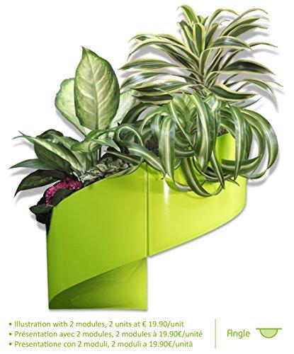 modulgreen-pot-pour-plantes-mural-design-intrieur-extrieur-vert