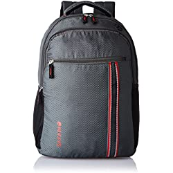 Safari 25 ltrs Laptop Backpack (Connect-Grey-LB)
