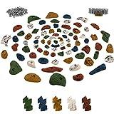 ALPIDEX Starterset: 80 Klettergriffe inklusive Schrauben und 250 Einschlagmuttern - für eine Kletterfläche von ca. 6 bis 10 m²
