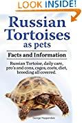 Russian Tortoises as Pets. Russian Tortoise