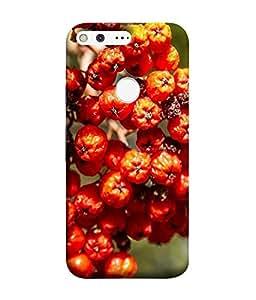 FUSON Designer Back Case Cover for Google Pixel (Orange Fruits Pattern Mango Fruit Pattern)
